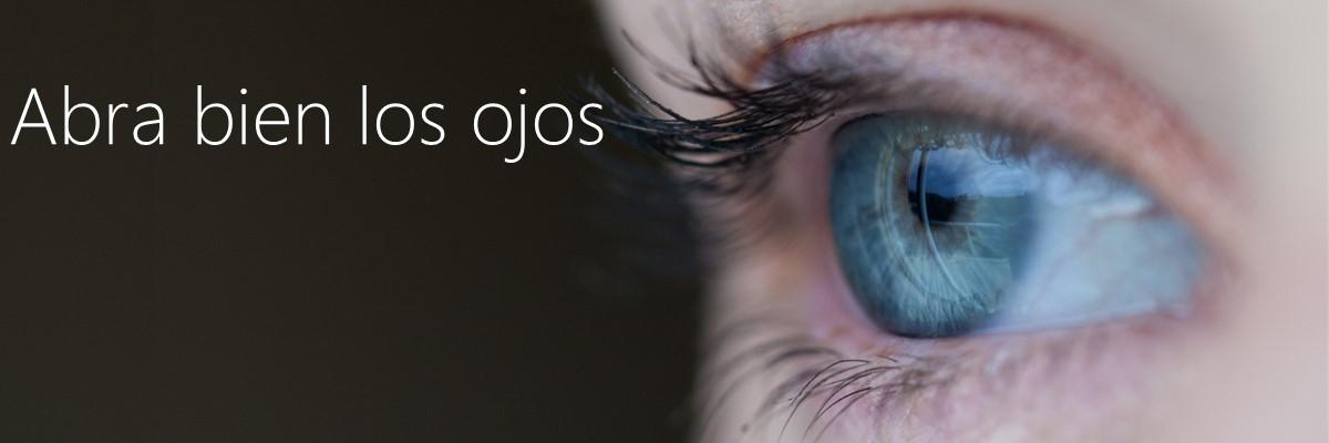 Microsoft Dynamics NAV 2015 y Power Map Navision y Excel Arbentia