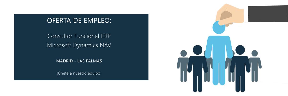 Empleo Microsoft Dynamics NAV