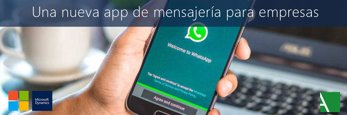 whatsapp business arbentia